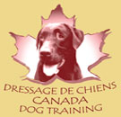 Canada Dog Training